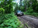 Тест-драйв Volkswagen Tiguan: обезоруживающий педантизм - фотография 2
